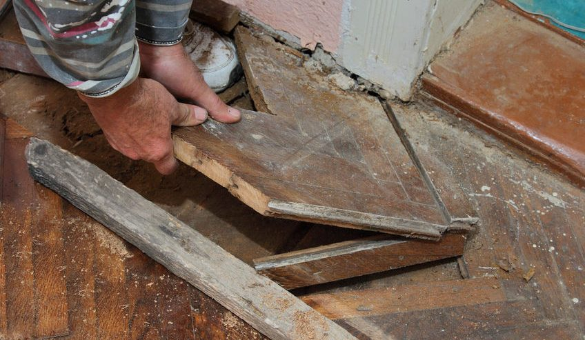 hand of worker removing old oak parquet